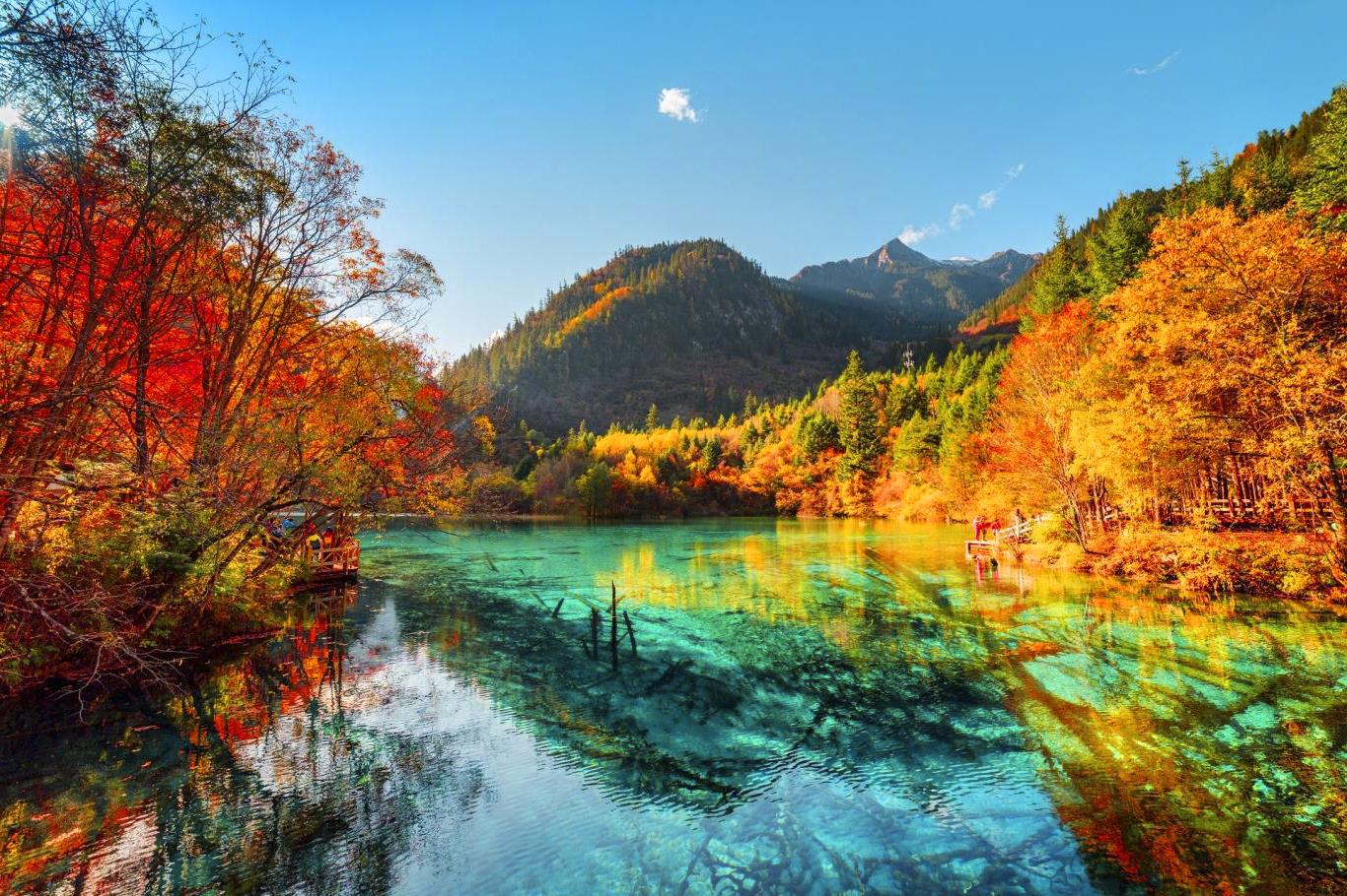 Giới thiệu du lịch Cửu Trại Câu - Ảnh 4
