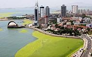 Bình yên với đảo Thanh Đảo của Trung Quốc