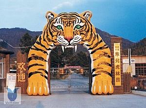 Siberian Tiger Park - Trung Quốc: Chứng kiến cuộc sống hoang dã của những động vật nguy hiểm