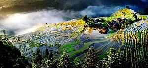 Thích thú khi ngắm nhìn ruộng bậc thang đẹp nhất ở Trung Quốc