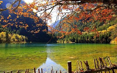 Cảnh đẹp mê hồn ở Cửu Trại Câu