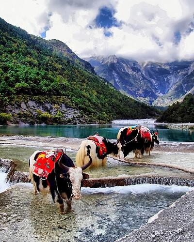 Những bức ảnh đẹp truyền cảm hứng cho bạn đến du lịch Trung Quốc