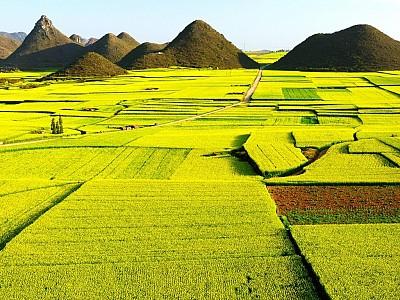 Những đồng cỏ đẹp nhất ở Trung Quốc, 2018