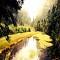 Du lịch Cửu Trại Câu vào thời gian nào là đẹp nhất?