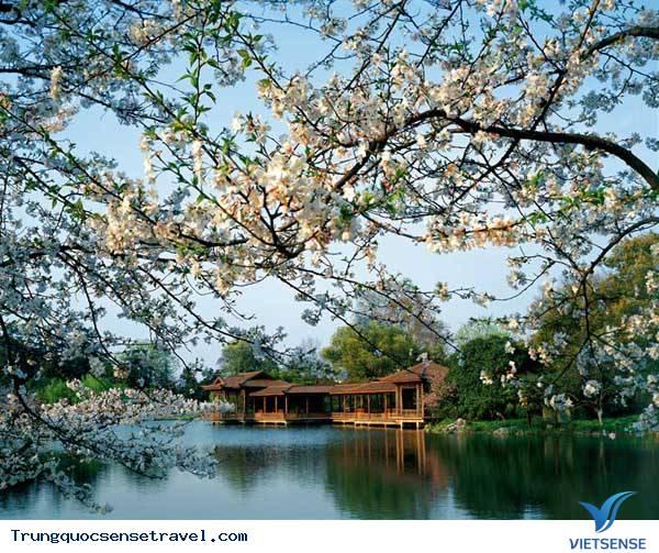 Nên đi du lịch Trung Quốc vào thời gian nào trong năm?,nen di du lich trung quoc vao thoi gian nao trong nam