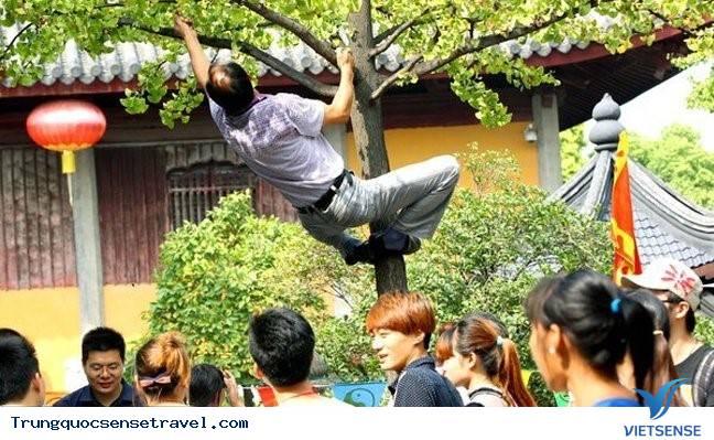 Trung Quốc xử lý mạnh tay với những hành vi du khách lỗ mãng,trung quoc xu ly manh tay voi nhung hanh vi du khach lo mang