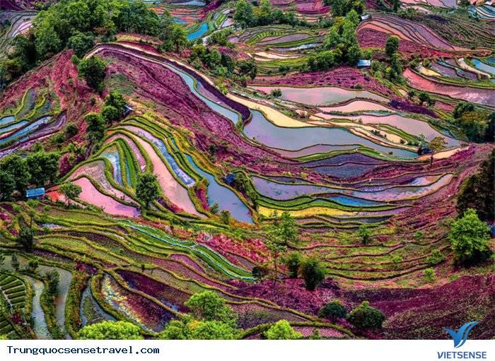 Vẻ đẹp lộng lẫy của ruộng bậc thang Nguyên Dương ,ve dep long lay cua ruong bac thang nguyen duong